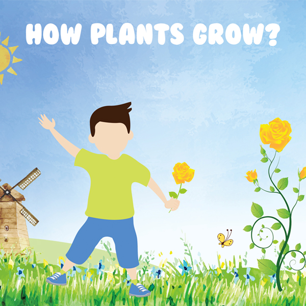 how-plants-grow-boy